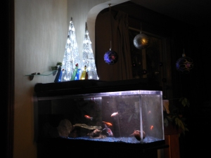 the stained glass, trees, fish and snail...