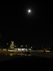 a lovely moonlit night at the Park...
