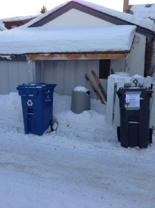 garbage and recycling bins out while still light Thursday, February 21, 2013...