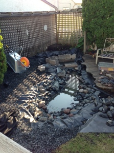 pond after rain storm...