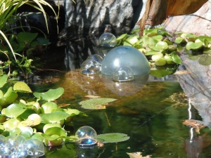lily pads and floats...