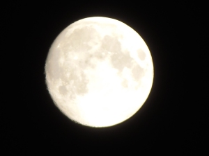 moon a few days from full...