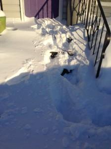 sidewalk and front steps...