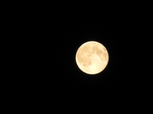 full moon last night...
