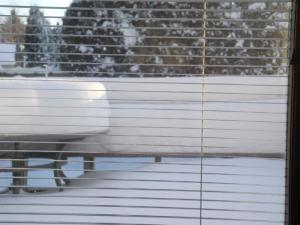 snow on the deck in January 2011...