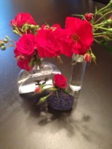 Ellen's roses...